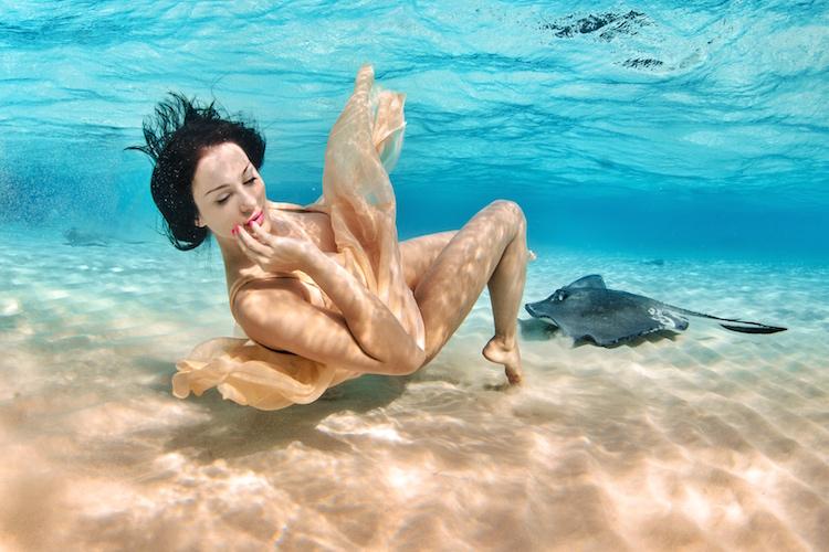Christina Cindrich - Manta Rays